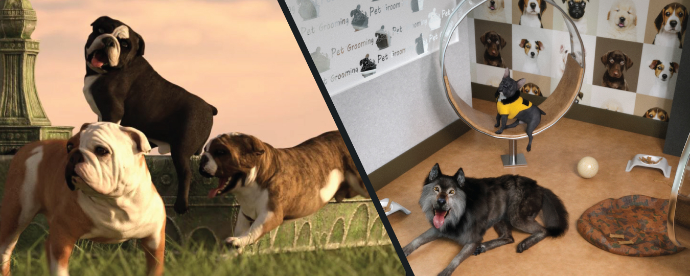 a split image of bulldogs in the grass and dogs at a dog spa